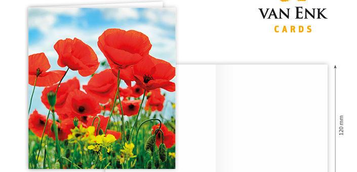 Leuke, vierkante kaart met bloem. Kaart is voorzien van een bijpassende, gekleurde envelop, heeft geen tekst en een blanco binnenzijde.